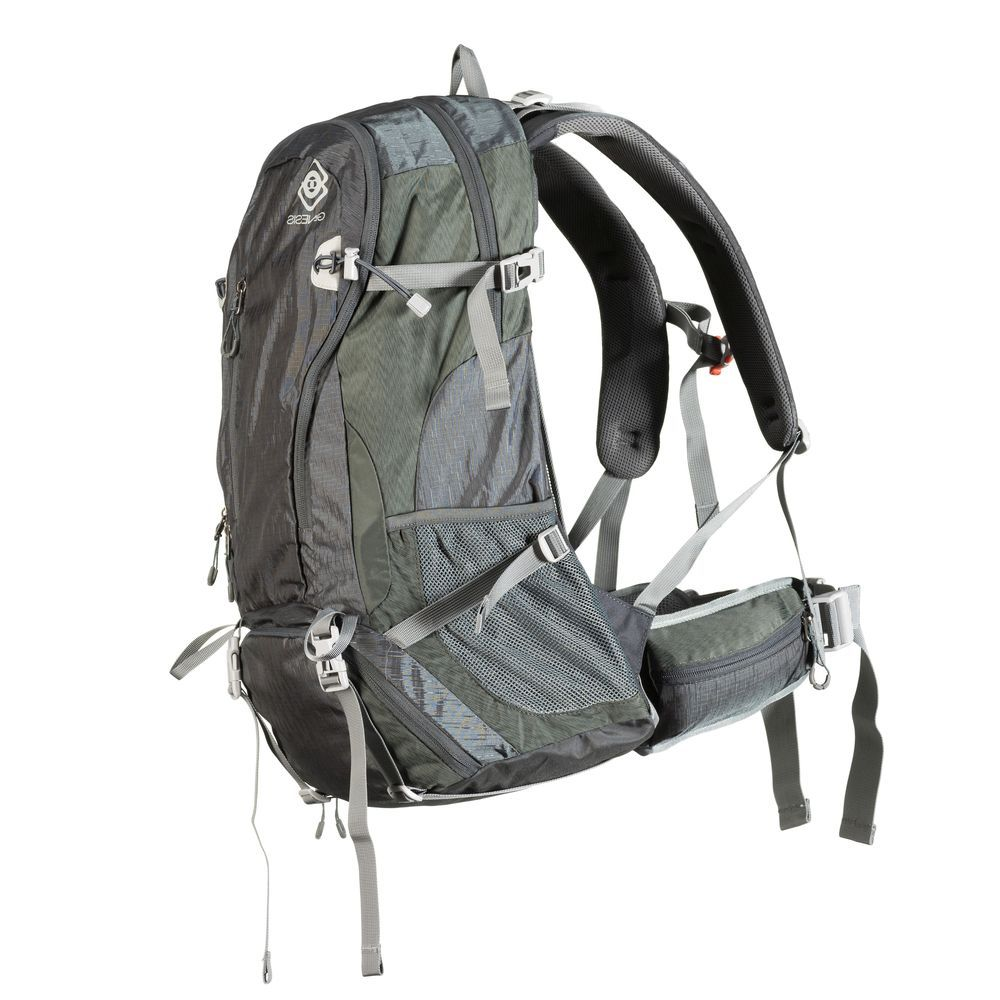Genesis Denali grey camera backpack
